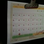 Keep Summer Simple & Fun with The Confident Mom 2012 Summer Survival Calendar